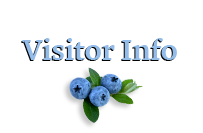 Visitor Info